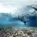waterproof 360 cameras