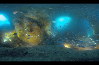 Boxfish underwater 360 camera: Shoot full 360 underwater in 5K!